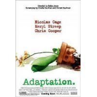 Adaptáció (DVD)