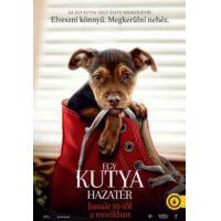 Egy kutya hazatér (DVD)