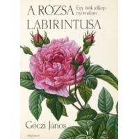 A rózsa labirintusa