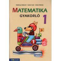 Matematika gyakorló 1. osztály