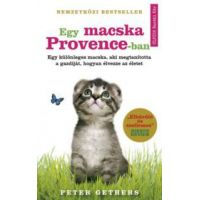 Egy macska Provence-ban
