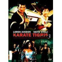Karate Tigris 3. - Extrakemény Kickboxer (DVD)