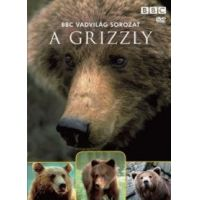 Vadvilág sorozat - A grizzly (DVD)