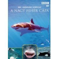 Vadvilág sorozat - A nagy fehér cápa (DVD)
