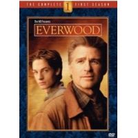 Everwood - 1. évad (6 DVD)