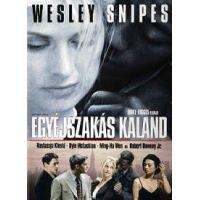 Egyéjszakás kaland (DVD)