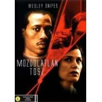 Mozdulatlan túsz (DVD)