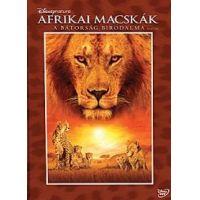 Afrikai macskák - A bátorság birodalma (DVD)