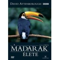 David Attenborough - A Madarak Élete (4 DVD)