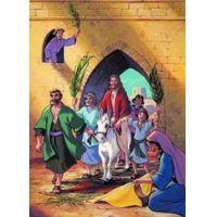 A Biblia Gyermekeknek - Újszövetség 1-12. - A teljes sorozat (12 DVD)