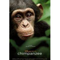 Oscar, a csimpánz (DVD)