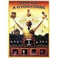 Promenád a gyönyörbe (DVD)