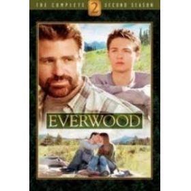 Everwood - 2. évad (6 DVD)
