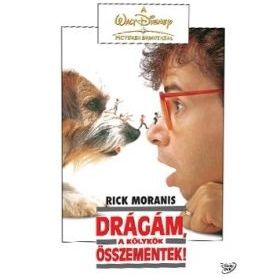 Drágám, a kölykök összementek (DVD)