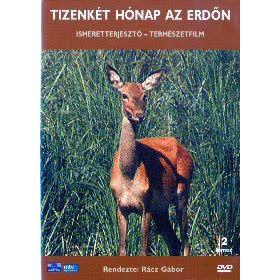 12 hónap az erdőn (DVD)