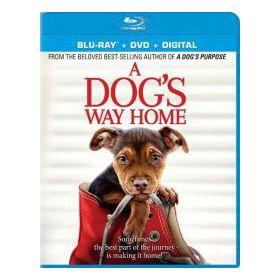 Egy kutya hazatér (Blu-ray)