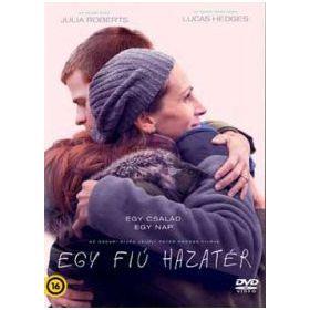 Egy fiú hazatér (DVD)