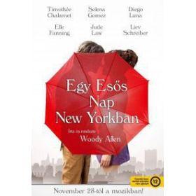 Egy esős nap New Yorkban (DVD)