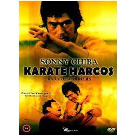 Karate harcos (DVD)