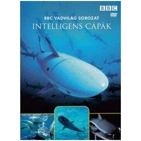 Vadvilág sorozat - Intelligens cápák (DVD)