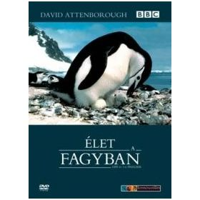 David Attenborough: Élet a fagyban (2 DVD)